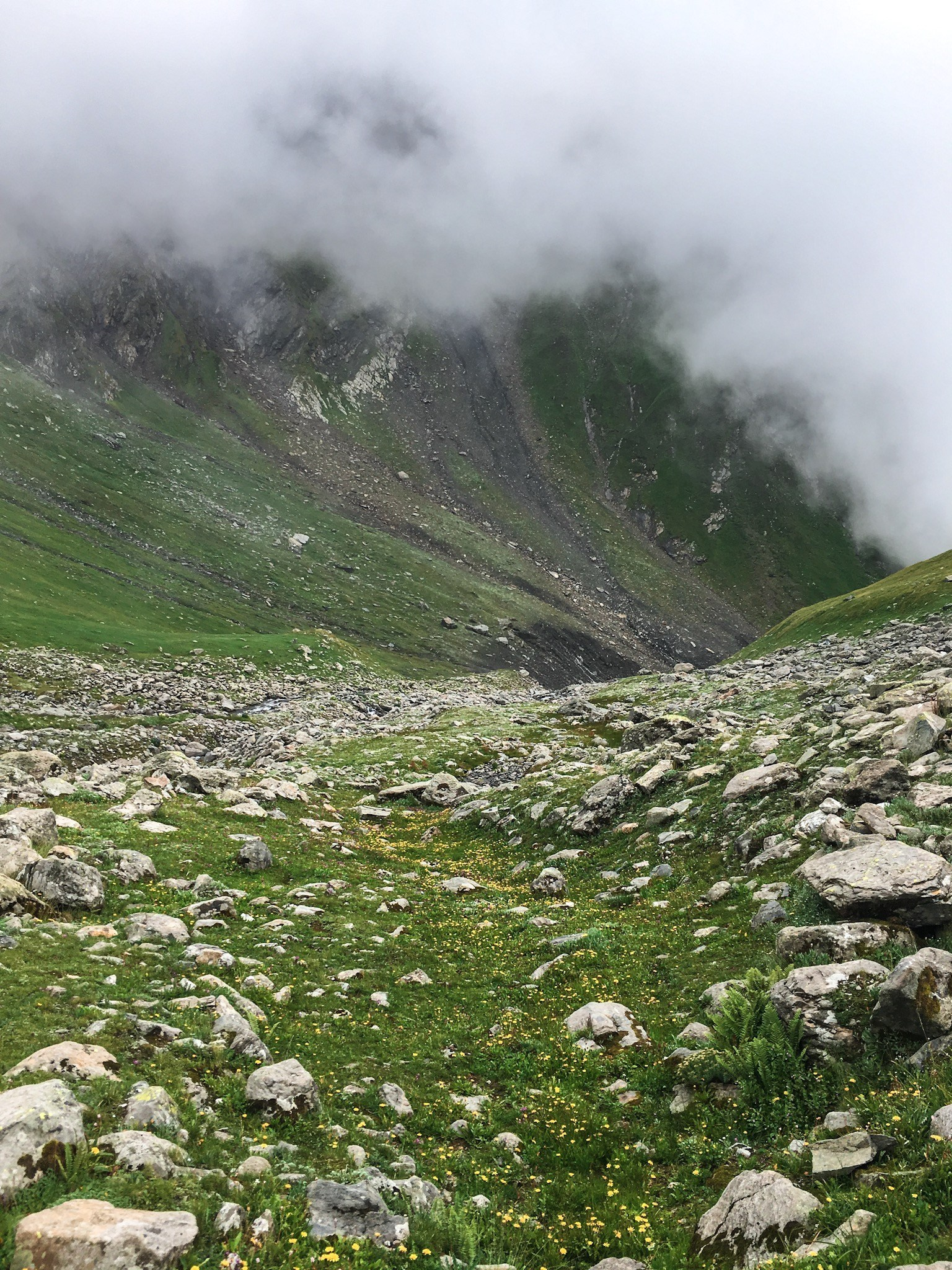 Parvati bagicha on shrikhand mahadev trek