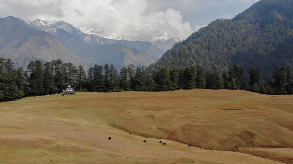 shangarh meadow in sainj valley