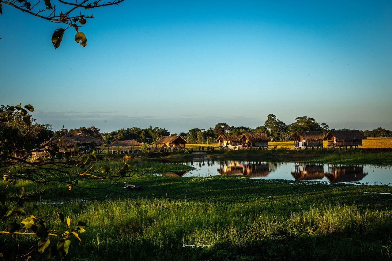 Traditional huts as home stays in Majuli