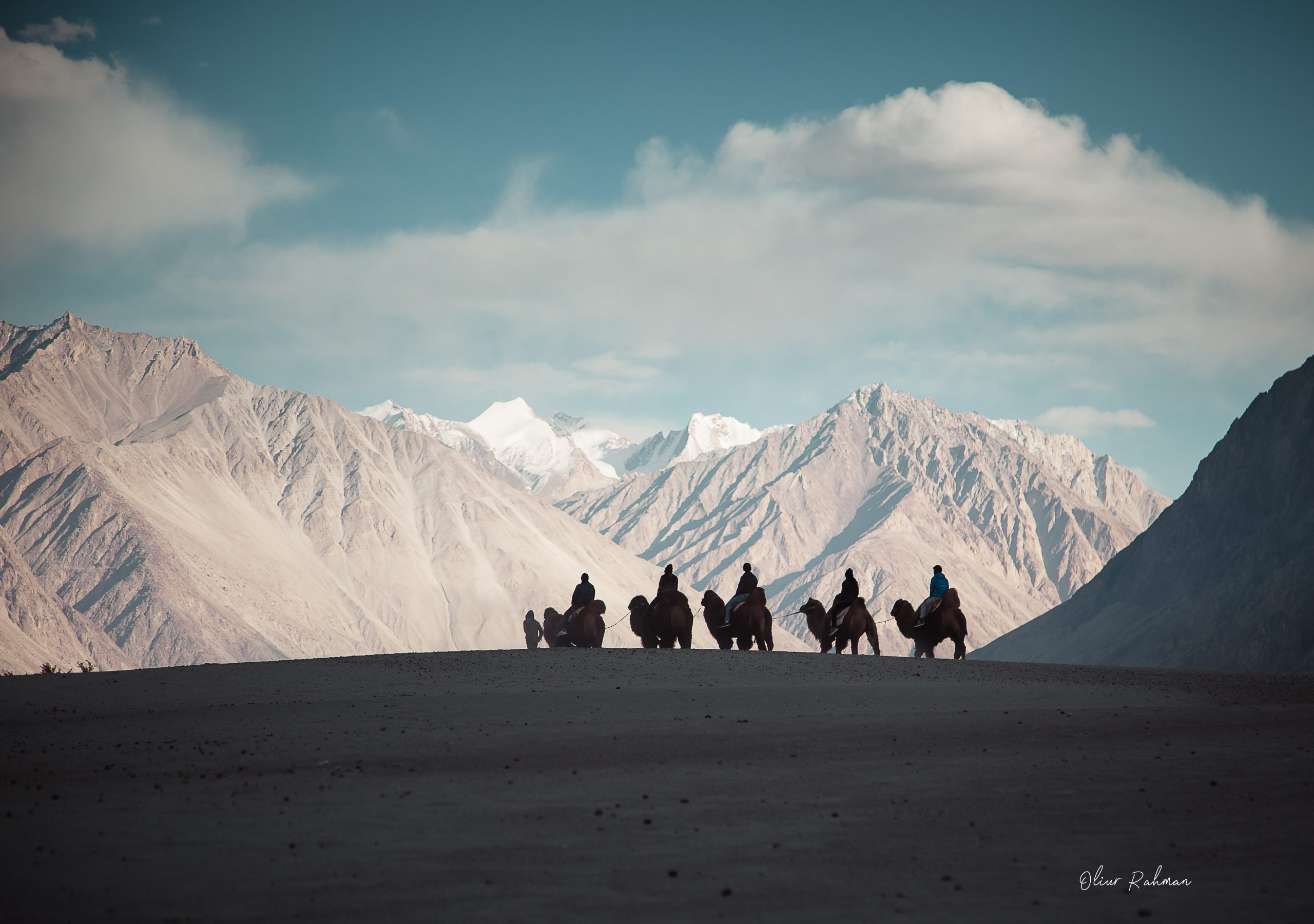 Camel ride in Nubra