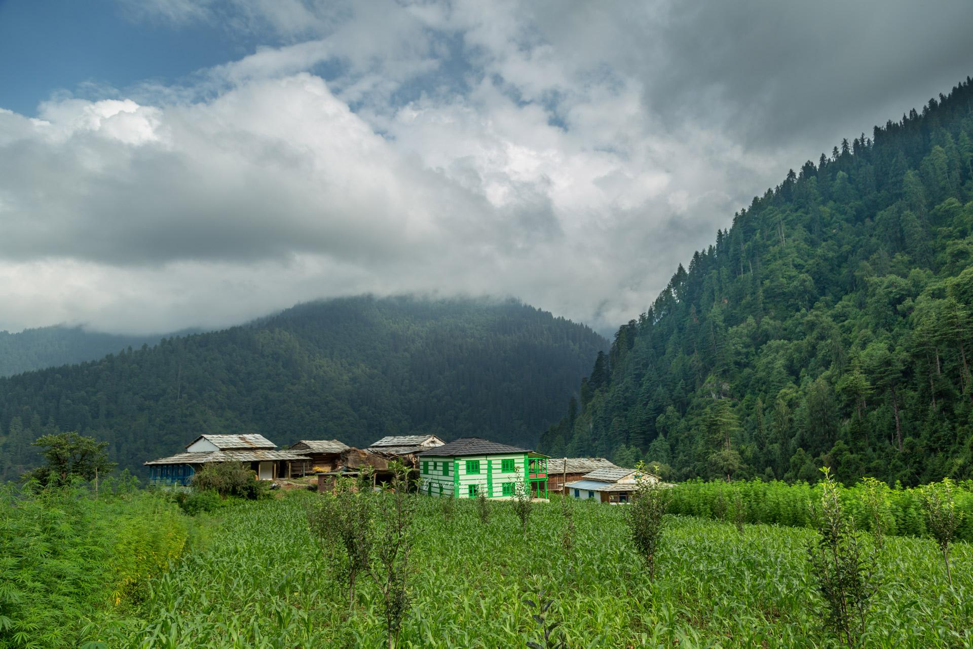 Upper Neahi Village of Sainj Valley