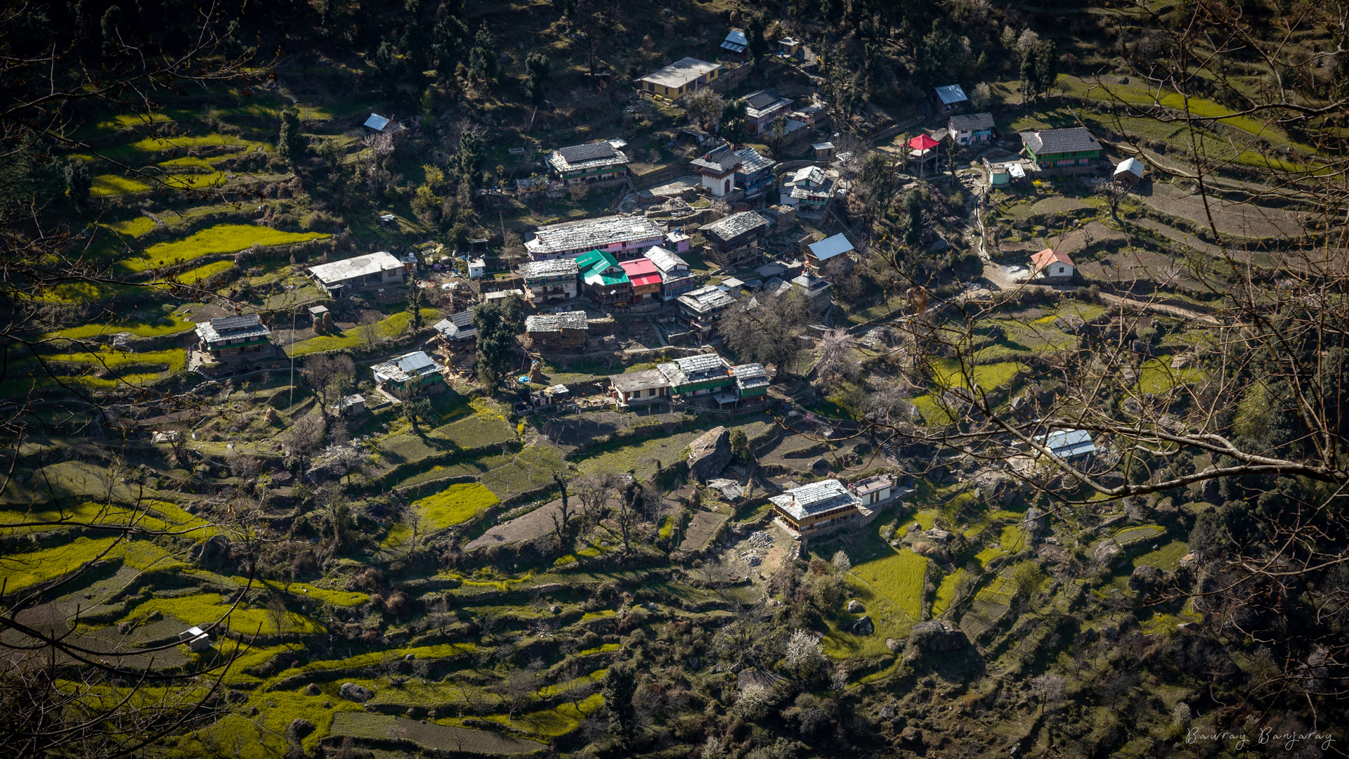 An aerial view of a village in Sainj Valley