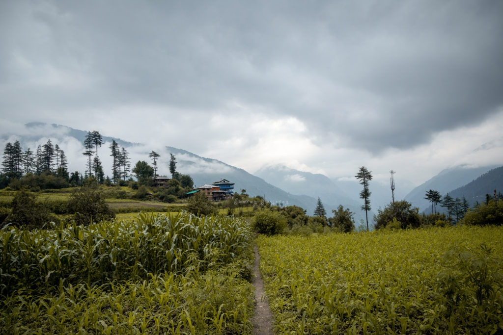 A village for Work from mountain