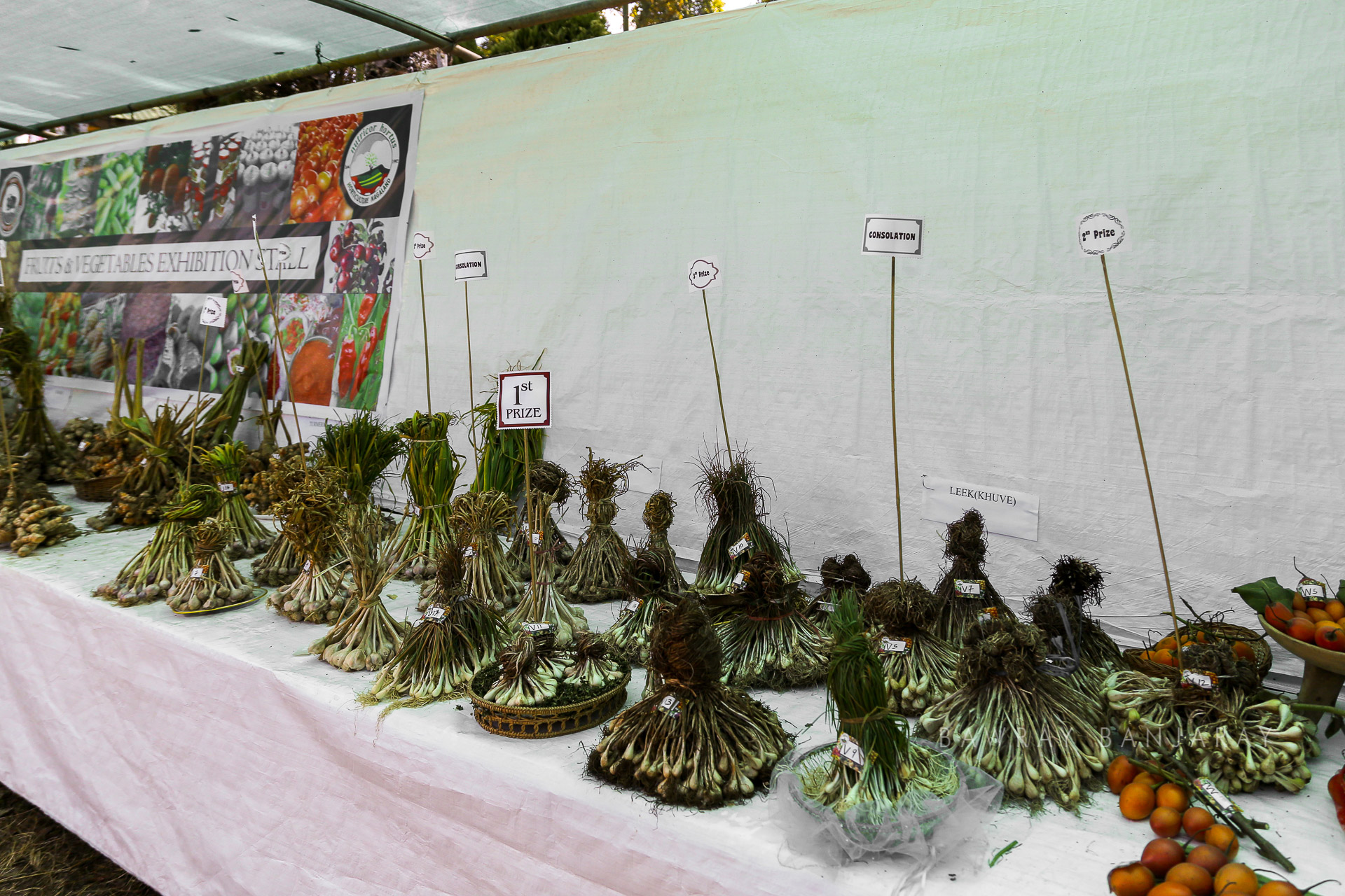 Winners of exhibition at the Nagaland Hornbill Fest 2018
