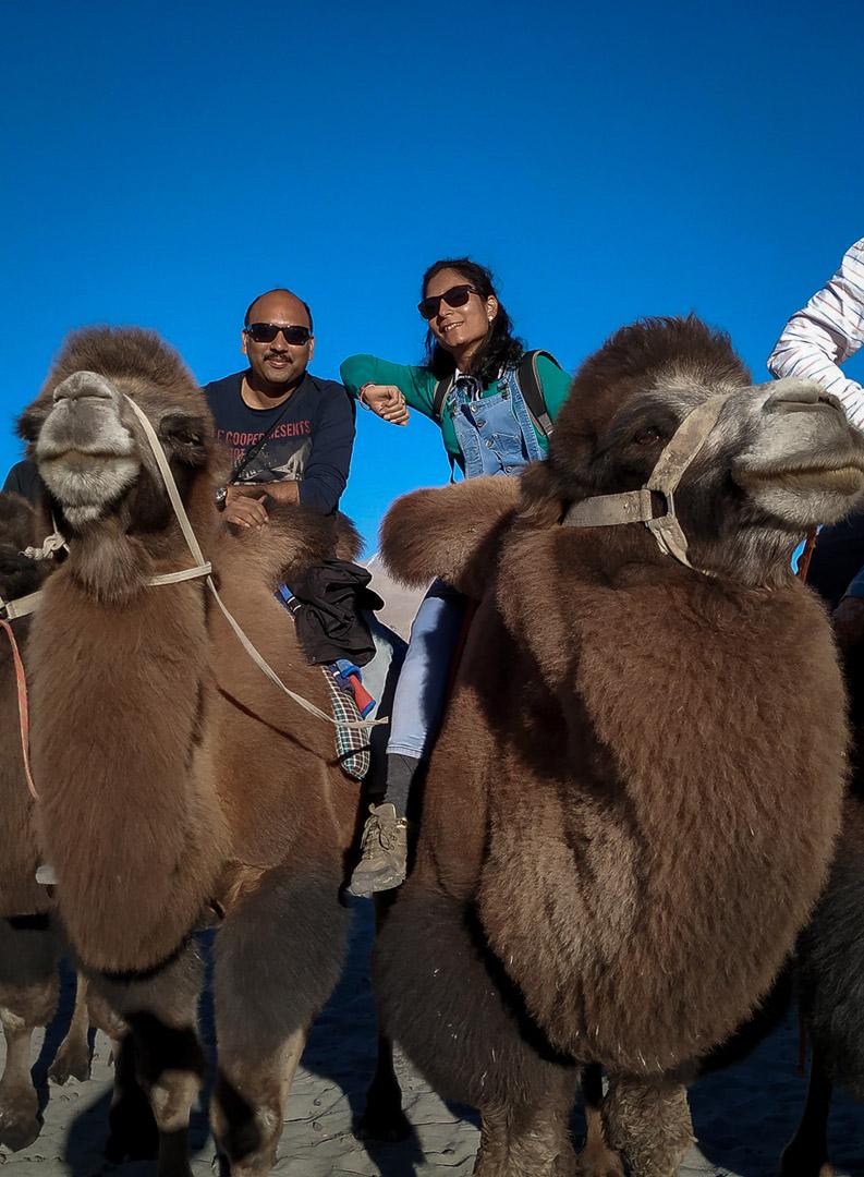 Camel Ride in Nubra Valley Of Ladakh