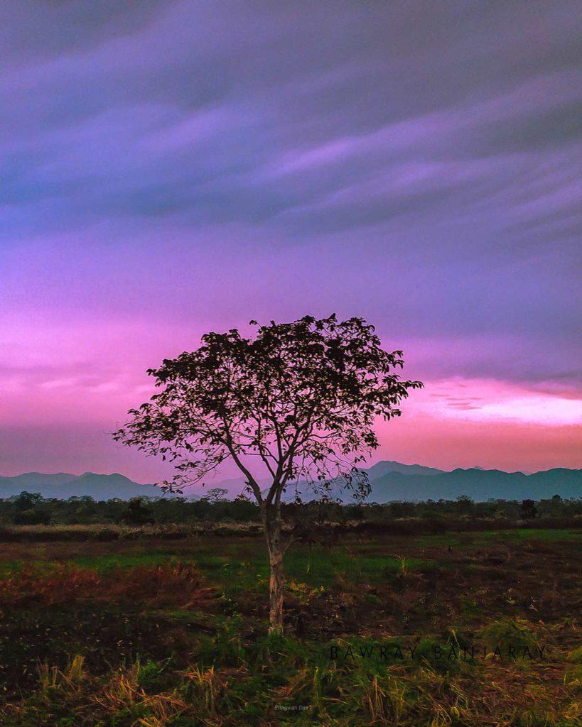 Sunrise at Manas National Park Clicked by Bawray Banjaray